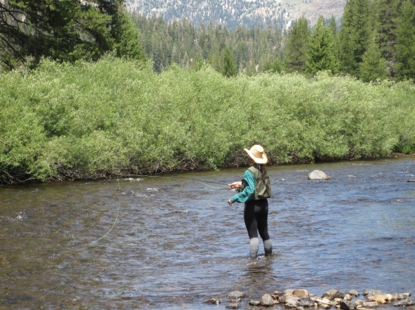alisa river fishing